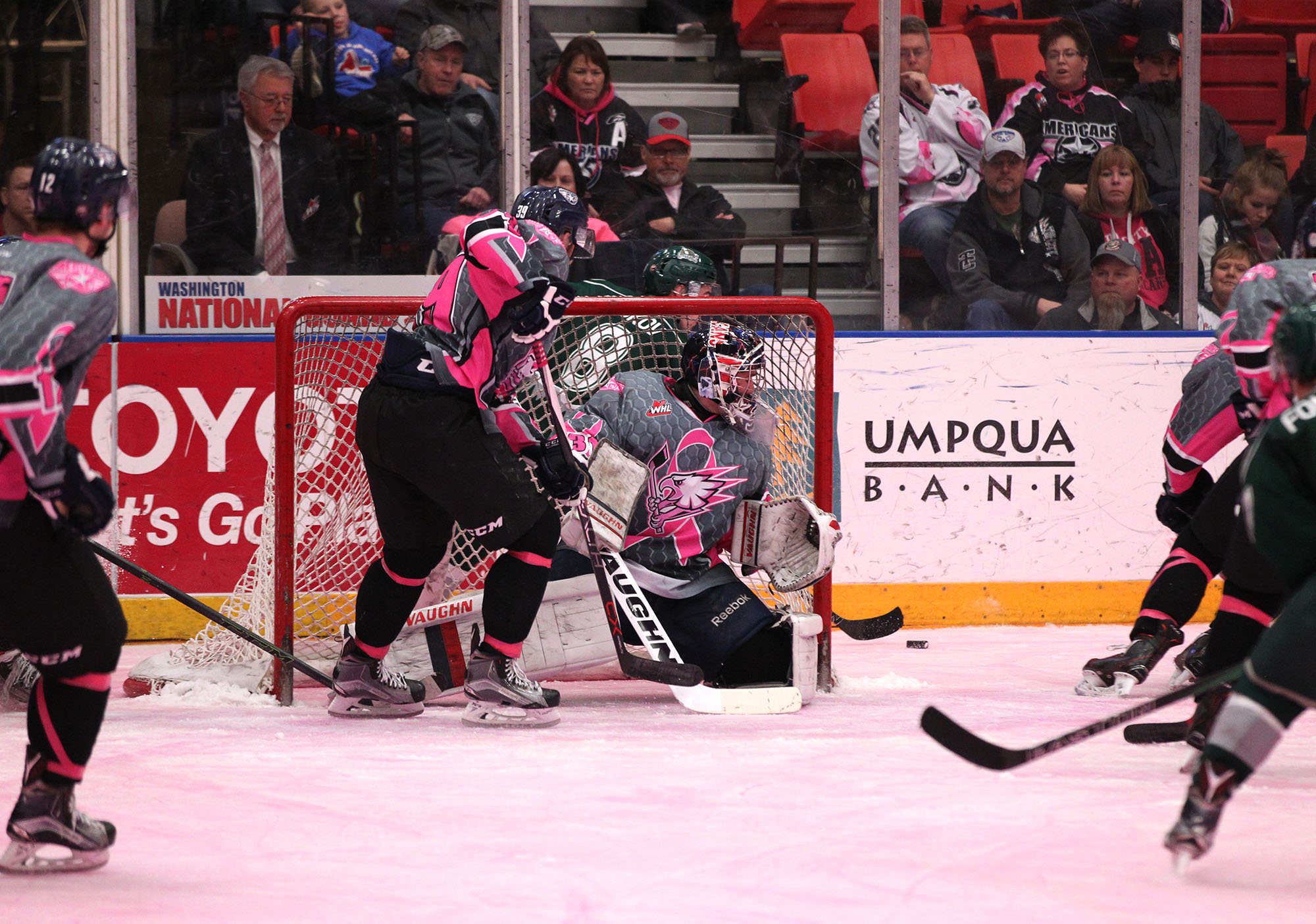 12th Annual Pink Ice Night for Breast Cancer Awareness